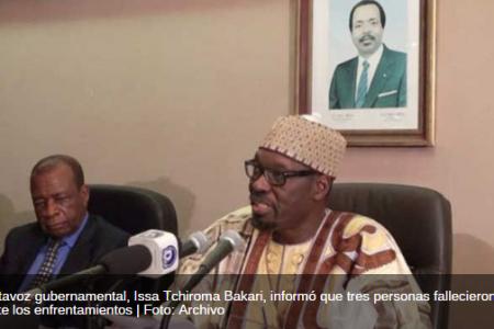 Camerún libera a 24 rehenes de Boko Haram