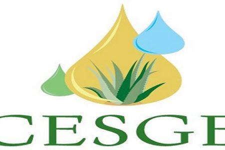 CESGE publica la Ley de Tasas de Guinea Ecuatorial