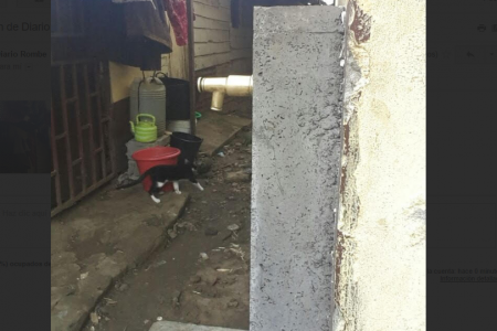 24 horas después de votar, el PDGE corta el agua a los habitantes de Campo Yaounde